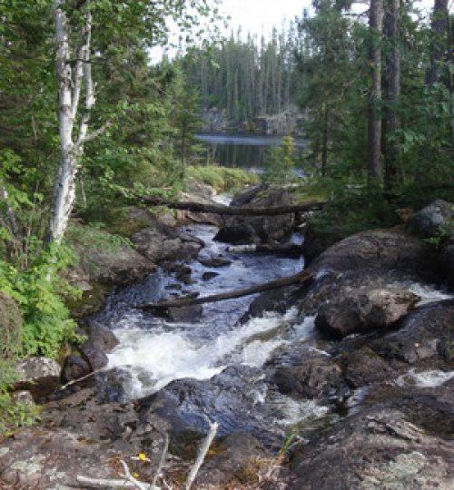 foxtail portage trail